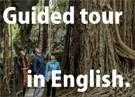 Cuided tour in English.